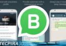 WhatsApp Business – versão empresarial do mensageiro já está disponível para baixar.